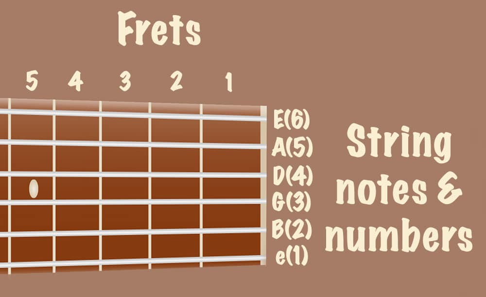 Frets and Strings