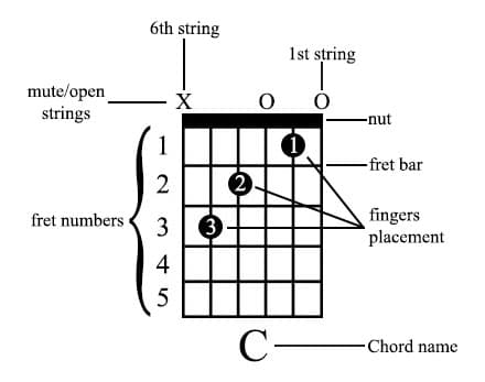 chord diagram details