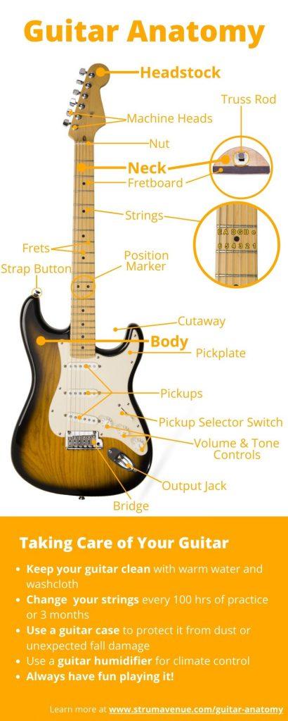 electric guitar anatomy