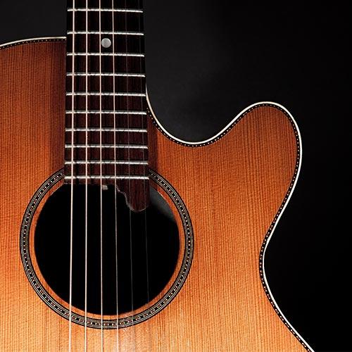 guitar cutaway